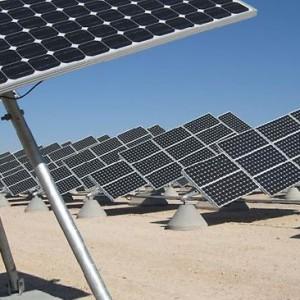 Solar Incentives – Macadamia Farm to Solar Farm
