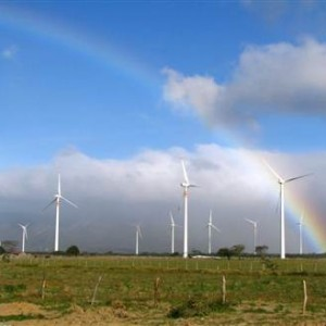 Harnessing Renewable Energy from a Wind Farm