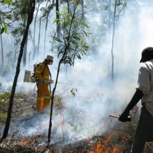 Australia first to approve a Savanna-burning Carbon Credit Project