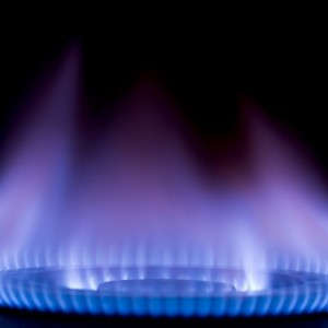 From Intestinal Bacteria To Renewable Propane Energy Source