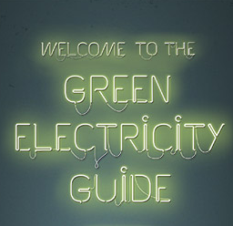 """The Green Electricity Guide"" exposes the positions of electricity retailers"
