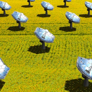 Solar sunflower from IBM enhances sun's rays 2,000 times to give heat, purify water and power homes