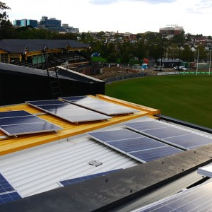 Tigers Roar to Life with the Installation of 100 kW Solar System