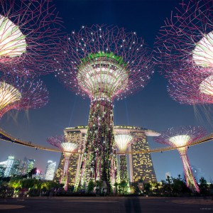 Solar powered Supertree give Singapore a futuristic look