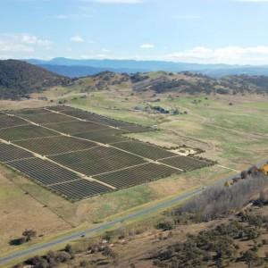 Royalla solar farm opens in Australia