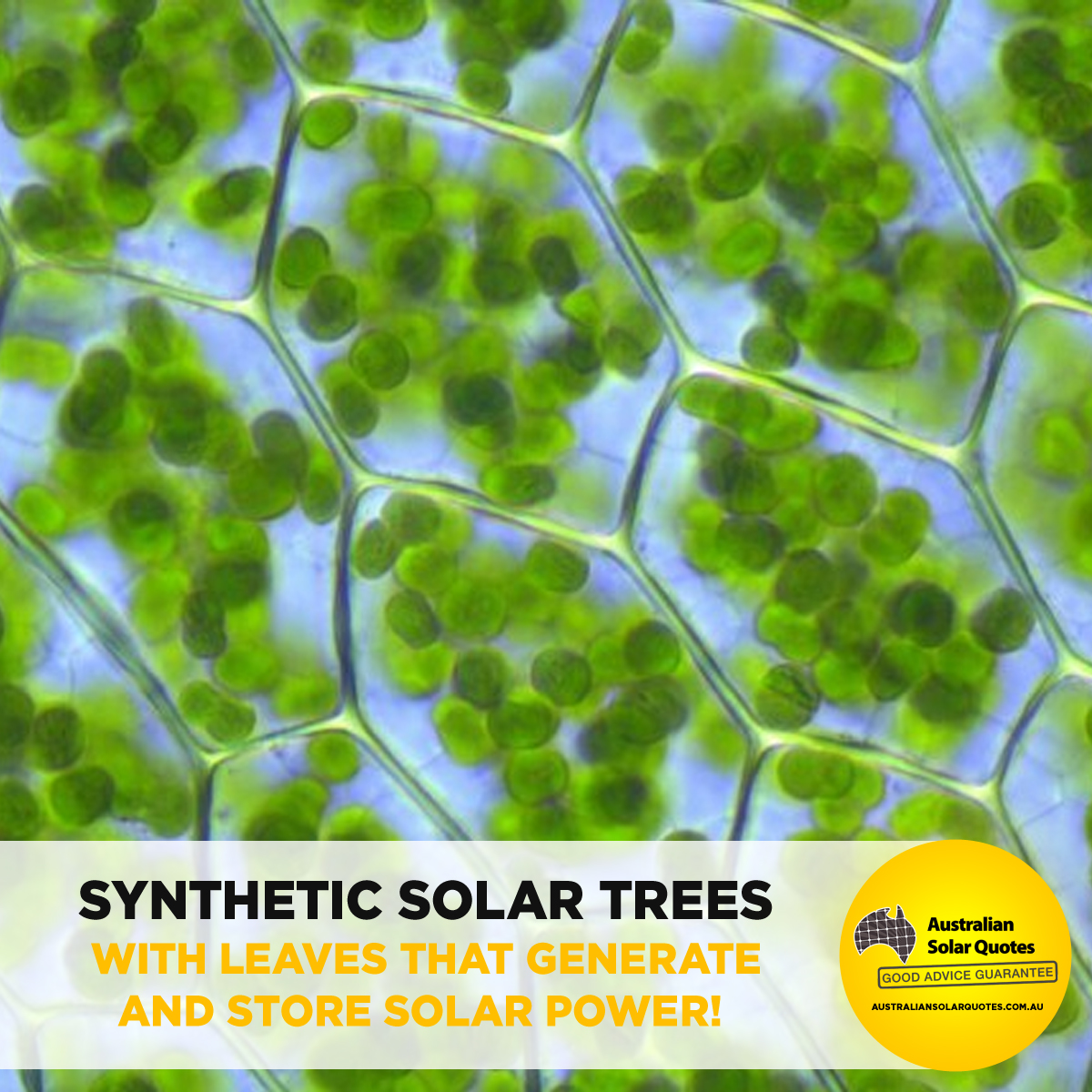 Synthetic Solar Trees - Infographic