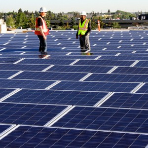 Solar Energy becoming the most popular renewable