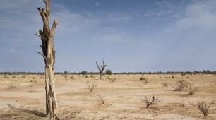 African Union's $20 Billion Renewable Energy Plan