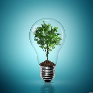 Get Green Power Without Blowing The Budget