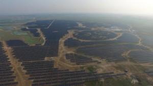panda, china, solar farm