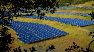Record year for renewable energy in Australia