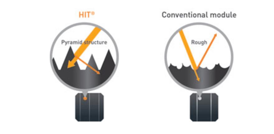 HIT Cells Characteristics
